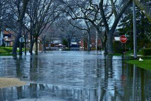 Flooding Information
