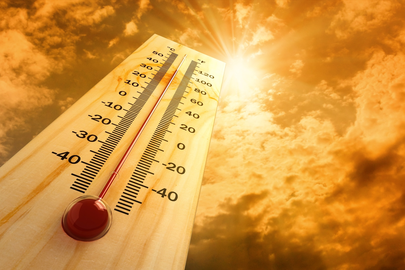 Beat the Heat with these tips.